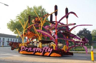 2013 Dragonfly