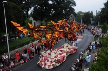 2008 Vlinderrijk